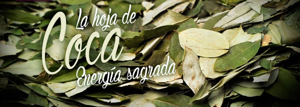 The Traditional Consumption of Coca Leaves
