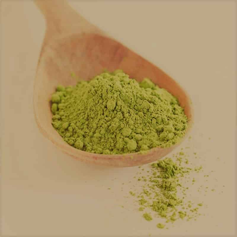 coca leaves powder