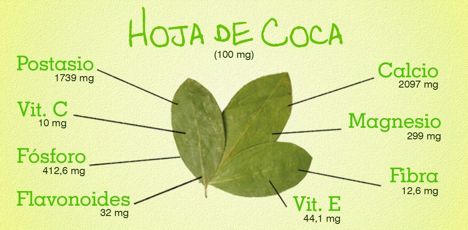 Nutritional and Medicinal Uses of the Coca Leaves
